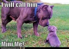 I will call him  Mini Me!