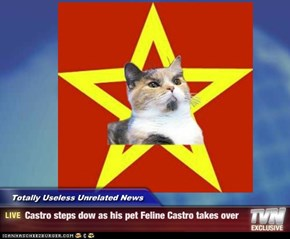Totally Useless Unrelated News - Castro steps dow as his pet Feline Castro takes over