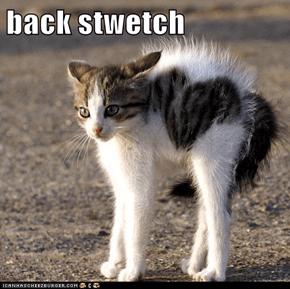 back stwetch