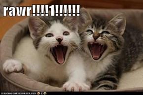 rawr!!!!1!!!!!!