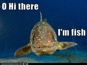 O Hi there I'm fish