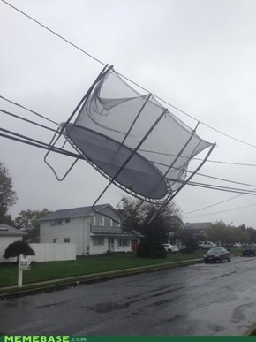 Go home, Trampoline, your drunk.