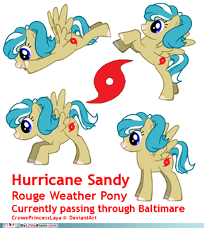 Hurricane Warning: Rouge Weather Pony!