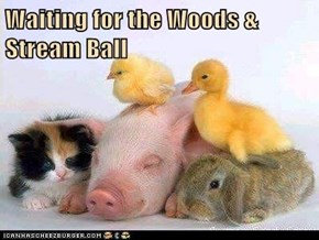 Waiting for the Woods & Stream Ball