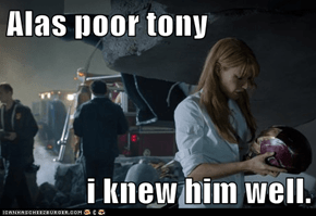 Alas poor tony   i knew him well.