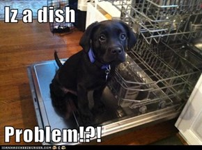 Iz a dish  Problem!?!