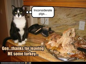 Inconsiderate pigs...