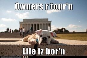 Owners r tour'n  Life iz bor'n
