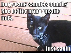 hurrycane sandies comin? She better bring gushie fuds.  just sayin