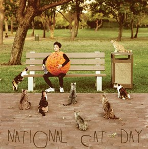 Celebrate National Cat Day in Style!