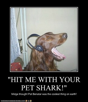 """HIT ME WITH YOUR PET SHARK!"""