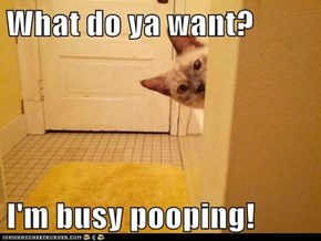 What do ya want?  I'm busy pooping!