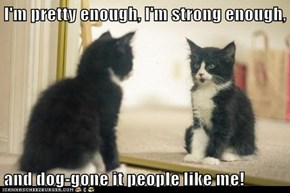 I'm pretty enough, I'm strong enough,  and dog-gone it people like me!