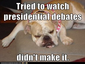 Tried to watch presidential debates  didn't make it.