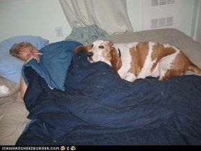 """Grandma always has a """"friend"""" to cuddle with when she visits."""