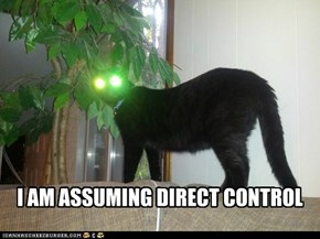 I AM ASSUMING DIRECT CONTROL