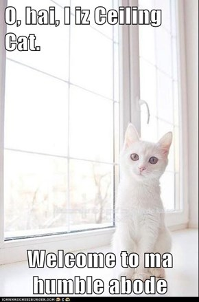 O, hai, I iz Ceiling Cat.  Welcome to ma humble abode