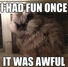 Once Was Enough for Colonel Meow