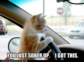 YOU JUST SOBER UP.     I GOT THIS.