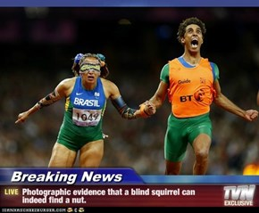Breaking News - Photographic evidence that a blind squirrel can indeed find a nut.