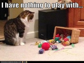 I have nothing to play with...