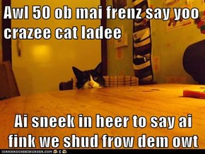 Awl 50 ob mai frenz say yoo crazee cat ladee  Ai sneek in heer to say ai fink we shud frow dem owt