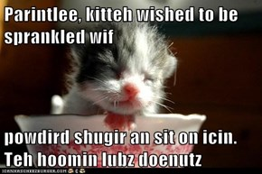 Parintlee, kitteh wished to be sprankled wif   powdird shugir an sit on icin. Teh hoomin lubz doenutz