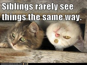 Siblings rarely see things the same way.