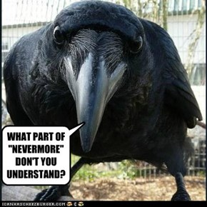 "WHAT PART OF ""NEVERMORE"" DON'T YOU UNDERSTAND?"