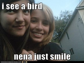 i see a bird  nena just smile
