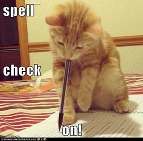 spell   check on!