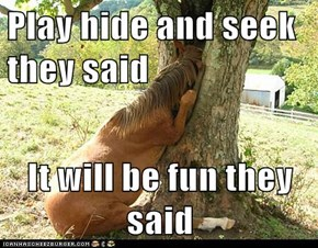 Play hide and seek they said  It will be fun they said