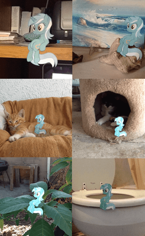 :Lyra's sitting adventures