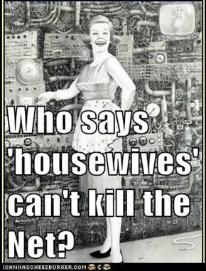 Who says 'housewives' can't kill the Net?
