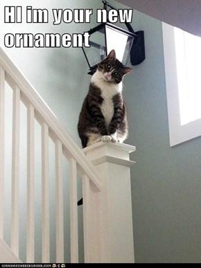 HI im your new ornament