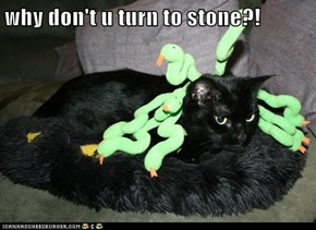 why don't u turn to stone?!