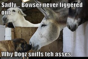 Sadly... Bowser never figgered out  Why Dogz sniffs teh asses