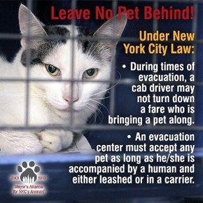 Hurricane Sandy: Leave No Pet Behind!