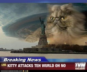 Breaking News - KITTY ATTACKS TEH WURLD OH NO