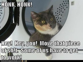 HONK, HONK!  Hey!  Hey, you!  Move that piece of sh!t.  Some of us have to get to work!