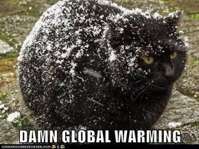 DAMN GLOBAL WARMING