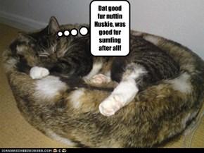 Bad kitteh!