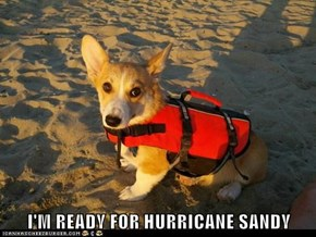 I'M READY FOR HURRICANE SANDY