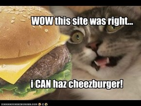 wow i CAN has cheezbuger!
