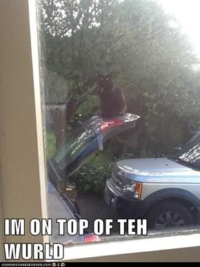 IM ON TOP OF TEH WURLD