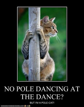 NO POLE DANCING AT THE DANCE?