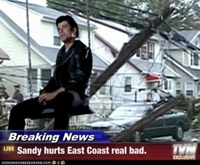 Breaking News - Sandy hurts East Coast real bad.