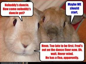 Bunny hop, anyone?
