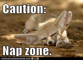 Caution:  Nap zone.