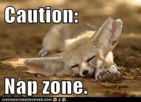 Caution:  Nap zone.